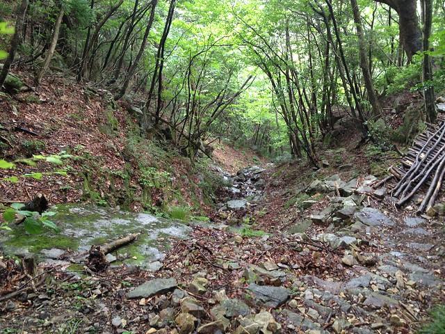 蕪山 登山道