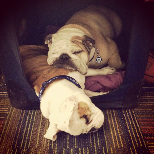 It's been a difficult weekend, but grateful to have learned from the best, @ButlerBlue2. I'll miss you bro!