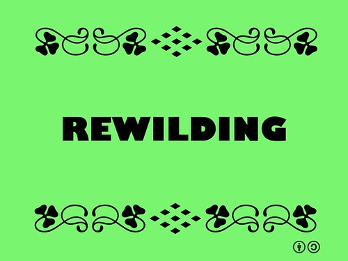 Buzzword Bingo: Rewilding = large-scale conservation aimed at restoring and protecting core wilderness areas, providing connectivity between such areas, and protecting or reintroducing apex predators and keystone species.