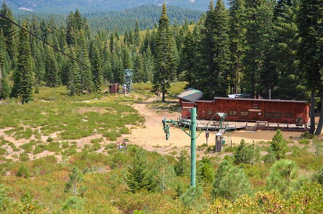 A ski lift and trees.