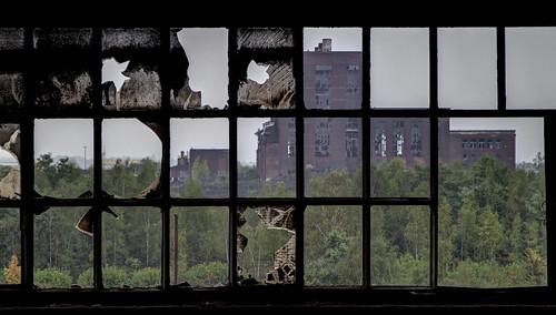 trees windows plant building abandoned glass rain station weather rouge frames power bricks poor central explore exploration derelict ue terres thermique