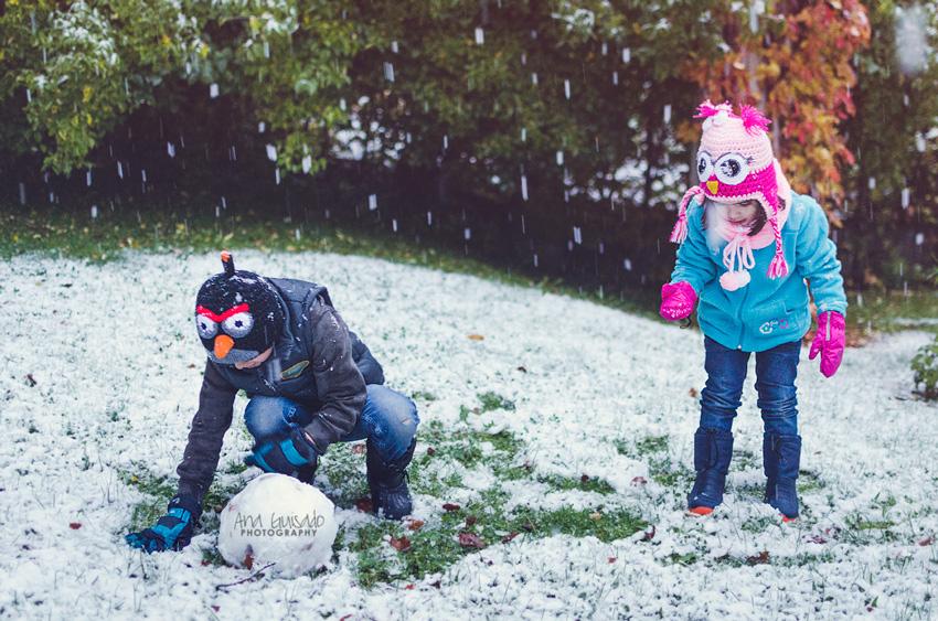 Las primeras nieves