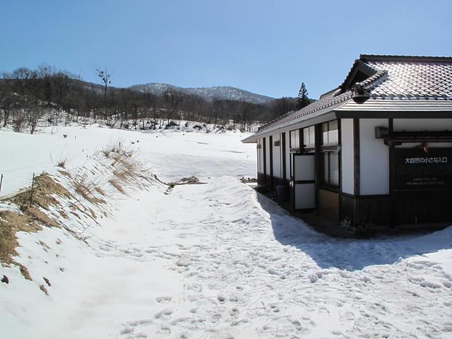2月の観察会でこんなに雪が少ないなんて・・
