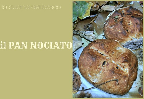 PAN NOCIATO