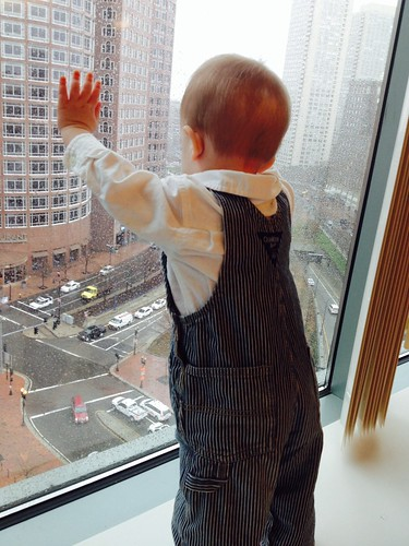 Max looking over downtown Boston 11-27-13