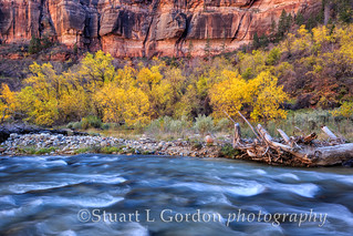 Zion Canyon Autumn_1198_99