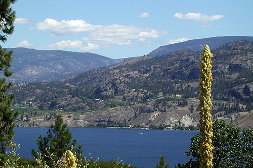 Okanagan Lake, Penticton, Okanagan Valley, British Columbia, Canada
