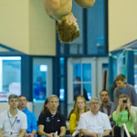 2014-02-07 -- Swimming & Diving vs. Millikin