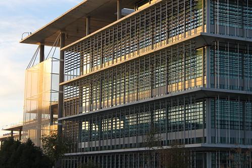 2014.02.02.087 - SEVILLA - Campus Palmas Altas