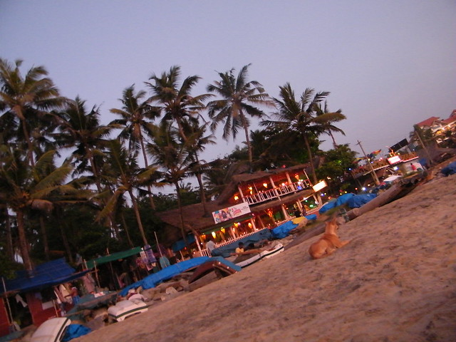 Restaurants on Varkala beach, Kerala