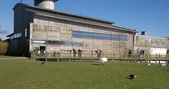 WWT Slimbridge entrance building