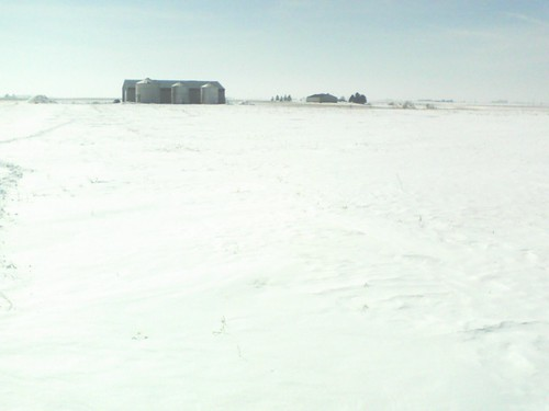 farm in winter 2014