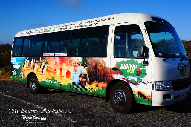 Day 3 Melbourne, Australia - Great Ocean Road Bunyip Tours Bus