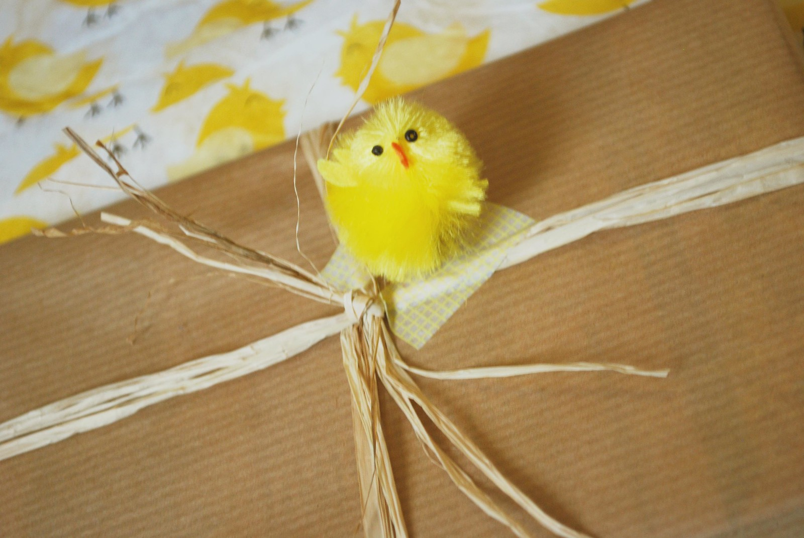 fluffy easter chick