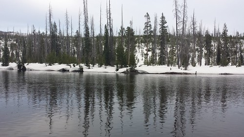Paseo a Jenny Lake