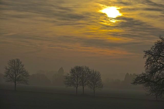 Winter Morning, Sony DSC-RX10M3, Sony 24-600mm F2.4-4.0