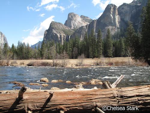 """Merced"""" Yosemite National Park ChelseaStark http://www.chelseastarkphotography.com by chelseastarkphotography.com"""