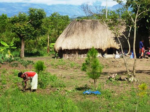 Papua13-Wamena Nord-Wosilimo (30)