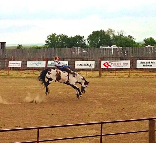 travel canada cowboys reisen saskatchewan kanada woodmountain rideo uploaded:by=flickrmobile flickriosapp:filter=nofilter