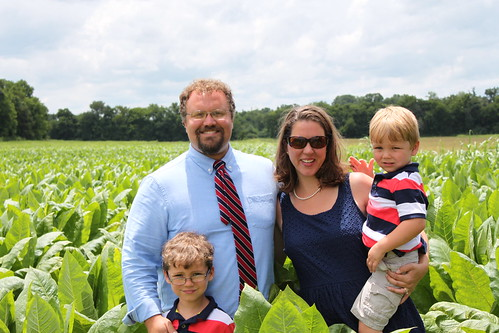 family tobacco farmliving