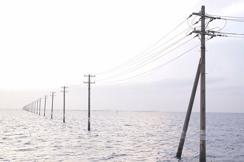 Soft High Key utility poles into the sea 09