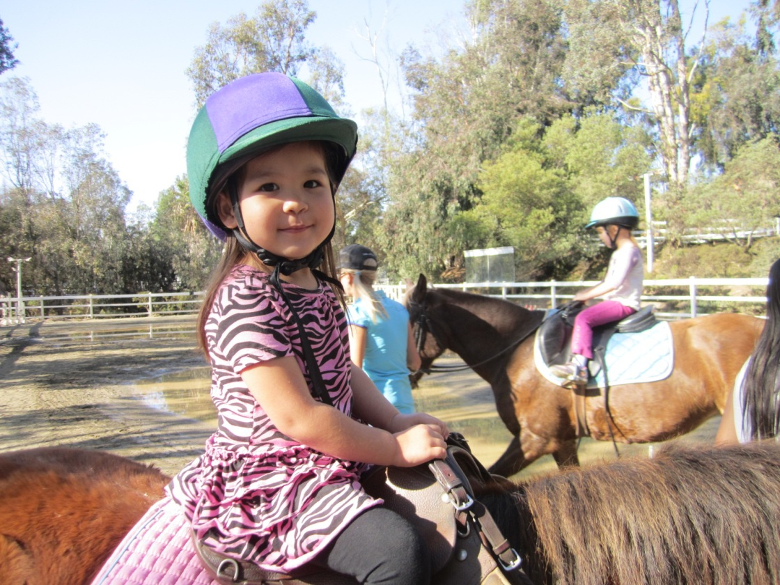 San Diego Kids Birthday Party Pony Rides And Petting Zoo