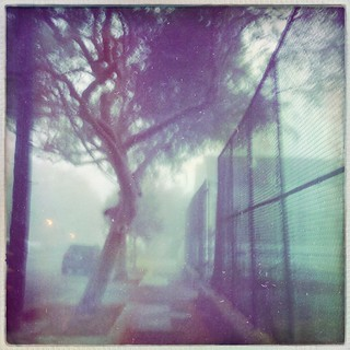 Morning Fog in Dogpatch