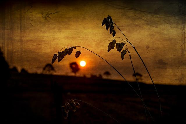 Vintage sunset