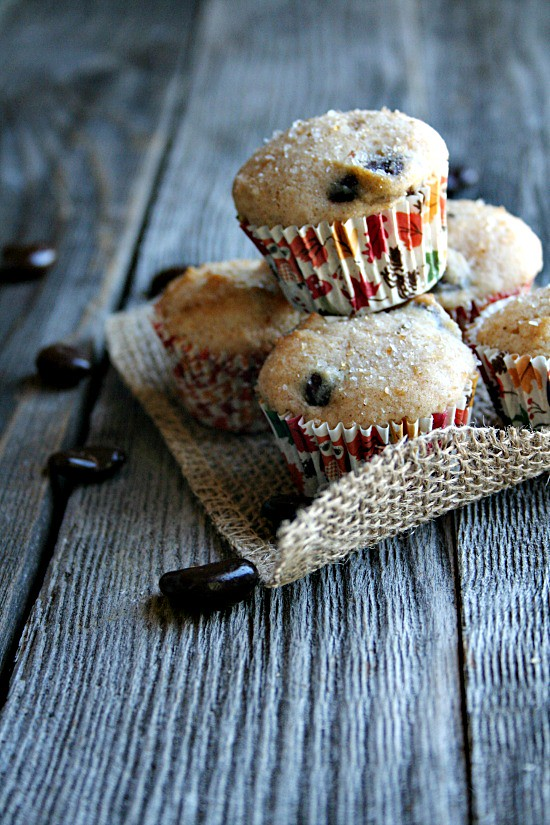 Mini Muffins with Dark Chocolate covered Cranberries