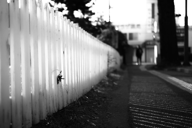 20131214_04_Fence