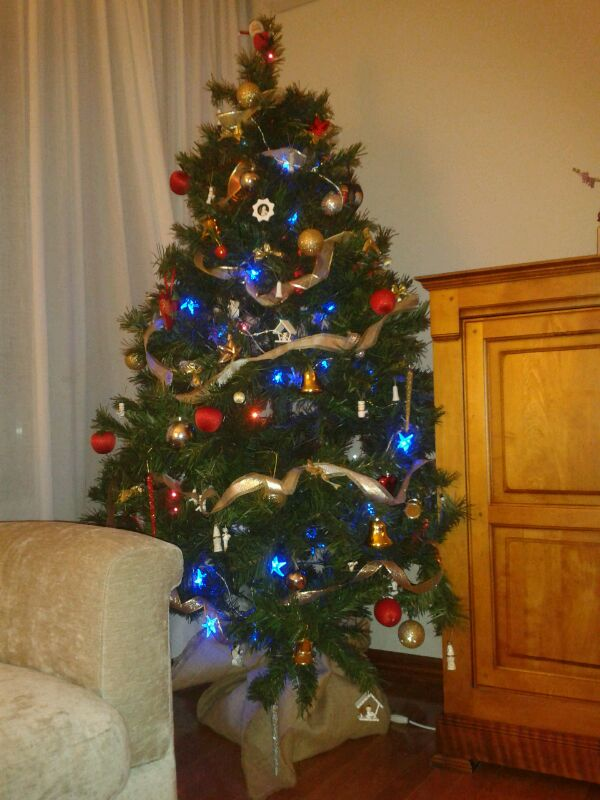 Fotos del árbol de Navidad y del Belén