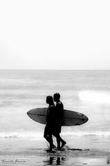 Surfing - Mar del Plata, Buenos Aires