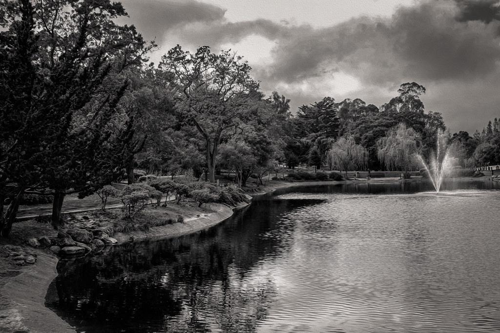 Sharon Park - Menlo Park - 2014
