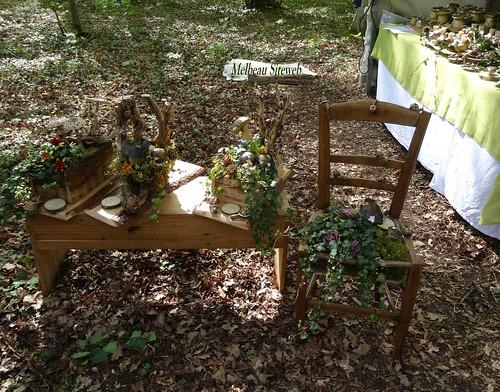 Saint Jean de Beauregard : Fête des plantes