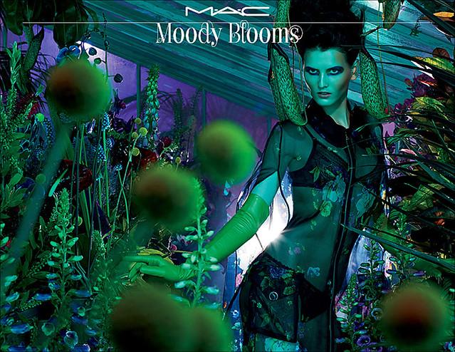 MAC_Moody_Blooms