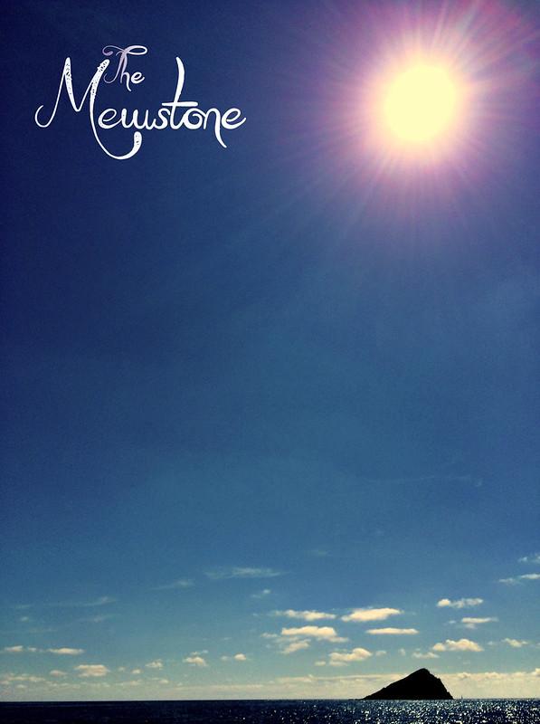 The Mewstone photo