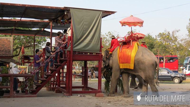 Ayutthaya Tailandia (15)
