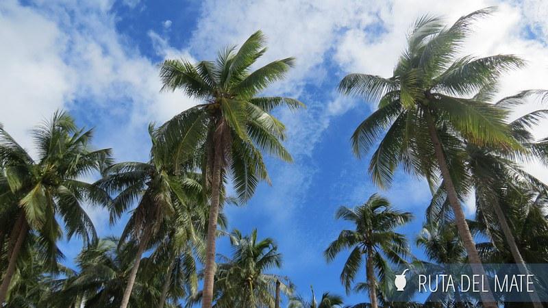 Palawan El Nido Port Barton Filipinas (5)