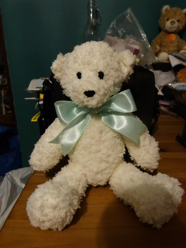 Benedict Bear for Emma 1305 (2)