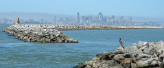 Breakwater Island at Alameda Point