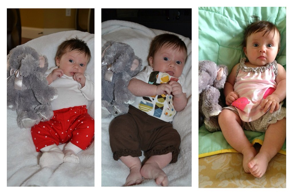 Months 1,2, and 3