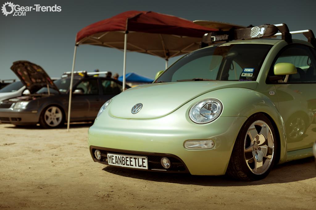 Mean Beetle