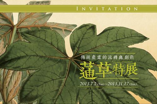 蓪草特展即日起連續4個月在台北植物園欽差行台展出。