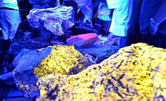 fluorescent minerals - Sterling Hill Mining Museum