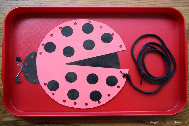 Ladybug Lacing Activity