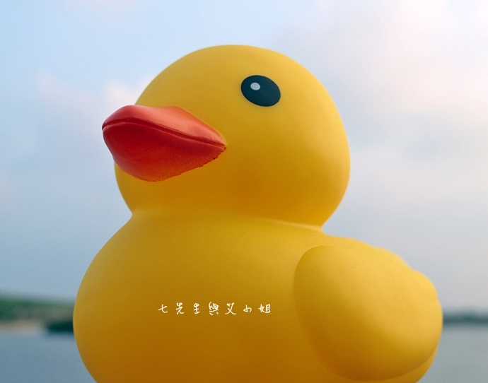 1 桃園縣地景廣場藝術節 黃色小鴨