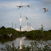 MAVEN Atlas V Launch by NASA Goddard Photo and Video