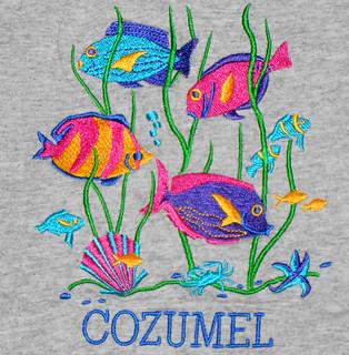 Cozumel - Tropical Fish Shirt