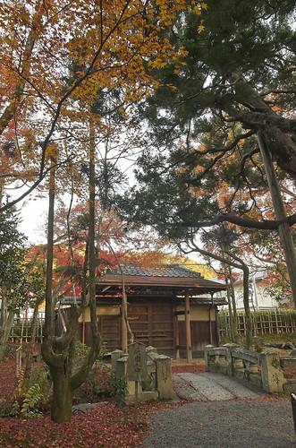 【写真】2013 紅葉 : 白沙村荘/2020-12-28/IMGP3684