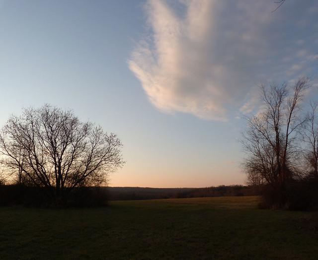 evening-field